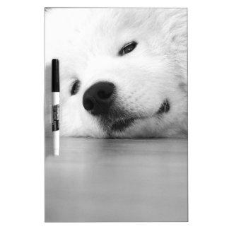 Samoyed Photo Dog White Dry-Erase Board