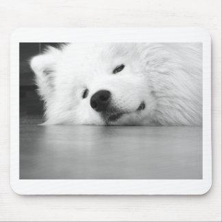 Samoyed Photo Dog White Mouse Pad