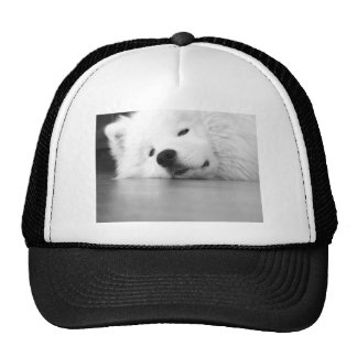 Samoyed Photo Dog White Trucker Hat