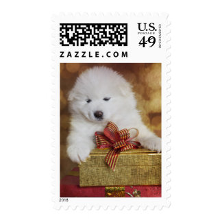 Samoyed Puppy Dog With Christmas Gifts Stamps