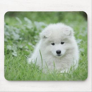 Samoyed puppy mouse pad