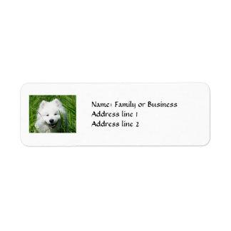 Samoyed Return Address Labels