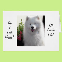 "SAMOYED SAYS HAPPY THAT YOU ARE ""21"" CARD"