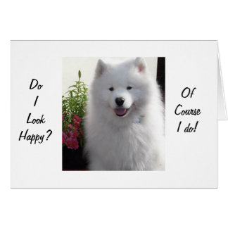 """SAMOYED SAYS HAPPY THAT YOU ARE """"21"""" CARD"""