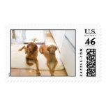 Samson and Delilah Postage Stamp