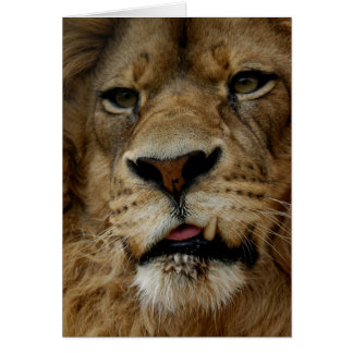 Samson the Snaggle-Toothed Lion Card