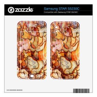 Samsung STAR S5230C Samsung STAR S5230C Skin