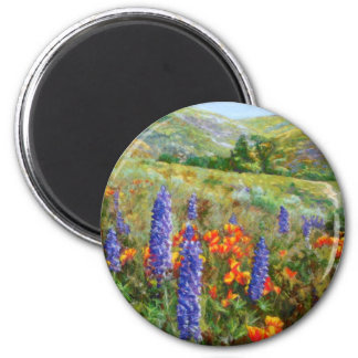Samuel Kelly's Back Yard 2 Inch Round Magnet