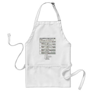 San Andreas Fault Over Time (Plate Tectonics) Adult Apron