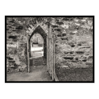 San Antonio Missions - Old Door Postcard