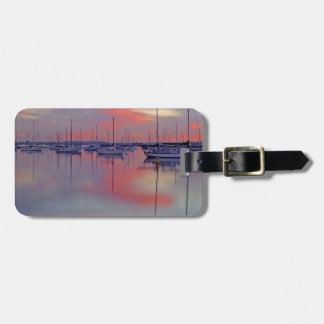 San Diego Bay Seen From The Airport Luggage Tag