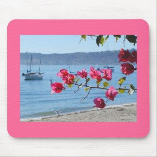 san diego beach mouse pad