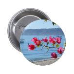san diego beach pins