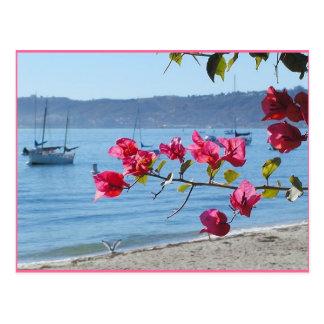 san diego beach postcard