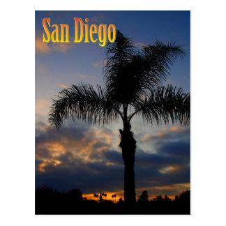 San Diego Palm Tree Sunset Postcard