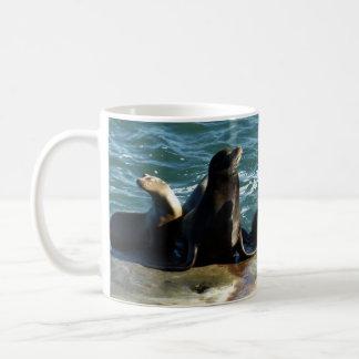 San Diego Sea Lions Coffee Mug
