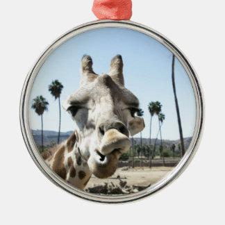 San Diego zoo Metal Ornament