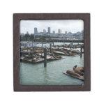 San Francisco and Pier 39 Premium Trinket Box