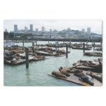 """San Francisco and Pier 39 Sea Lions 10"""" X 15"""" Tissue Paper"""