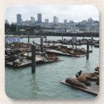 San Francisco and Pier 39 Sea Lions City Skyline Beverage Coaster