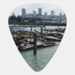 San Francisco and Pier 39 Sea Lions City Skyline Guitar Pick