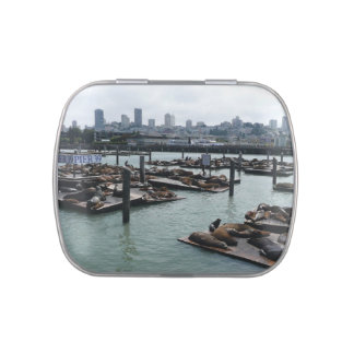 San Francisco and Pier 39 Sea Lions City Skyline Jelly Belly Candy Tin