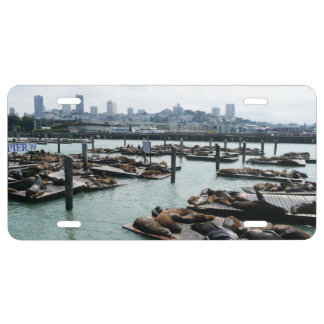 San Francisco and Pier 39 Sea Lions City Skyline License Plate