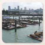 San Francisco and Pier 39 Sea Lions City Skyline Square Paper Coaster
