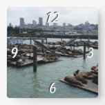 San Francisco and Pier 39 Sea Lions City Skyline Square Wall Clock
