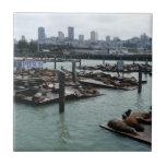 San Francisco and Pier 39 Tile