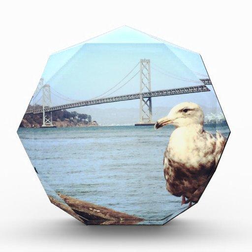 San Francisco Bay Bridge Seagull Awards