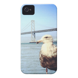 San Francisco Bay Bridge Seagull Case-Mate iPhone 4 Cases