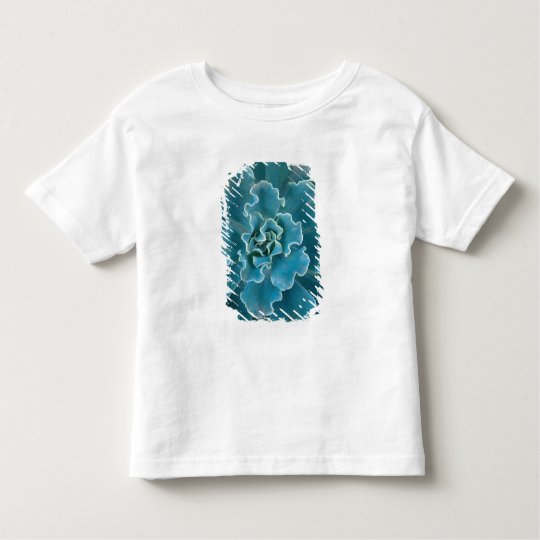 San Francisco Californias Golden Gate Park and Toddler T-shirt