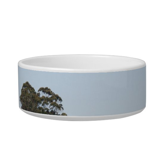 San Francisco Coit Tower Bowl