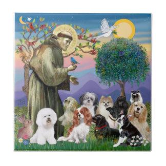 San Francisco con 10 perros Azulejo Cuadrado Pequeño