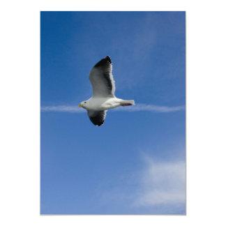 San Francisco Gull 5x7 Paper Invitation Card