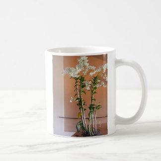 San-Francisco-Museum-Spring Coffee Mug