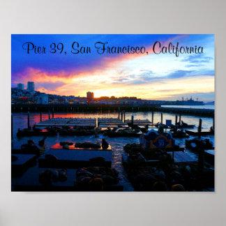 San Francisco Pier 39 Sea Lions #4-2 Poster