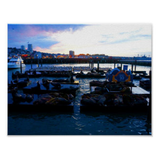 San Francisco Pier 39 Sea Lions #6-1 Poster