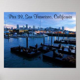 San Francisco Pier 39 Sea Lions #7-2 Poster