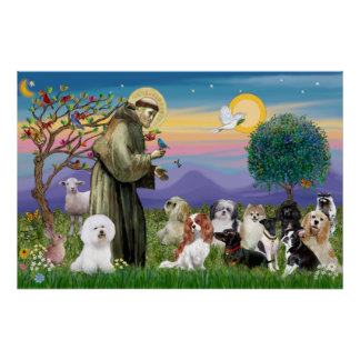 San Francisco que bendice diez perros Póster