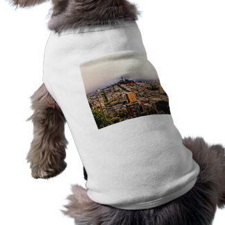 San Francisco Ropa Para Mascota