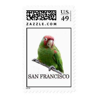 San Francisco Wild Parrot Postage Stamps