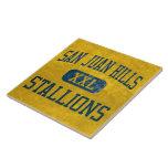 San Juan Hills Stallions Athletics Tiles