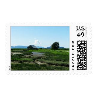 San Juan Islands Hills Stamps