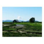 San Juan Islands Hills Postcard