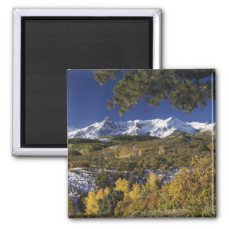 San Juan Mountains and Aspen trees in fallcolor 2 Inch Square Magnet