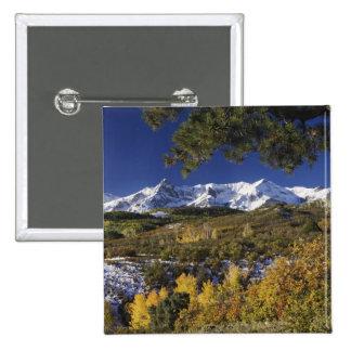 San Juan Mountains and Aspen trees in fallcolor Button
