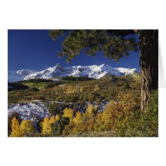 San Juan Mountains and Aspen trees in fallcolor Card