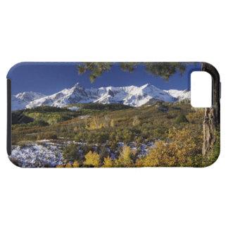 San Juan Mountains and Aspen trees in fallcolor iPhone 5 Case